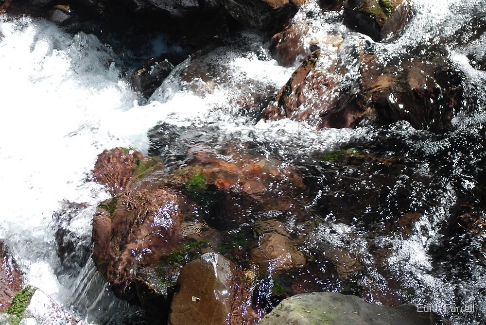 Pure Glacier Water by Edith Farrell