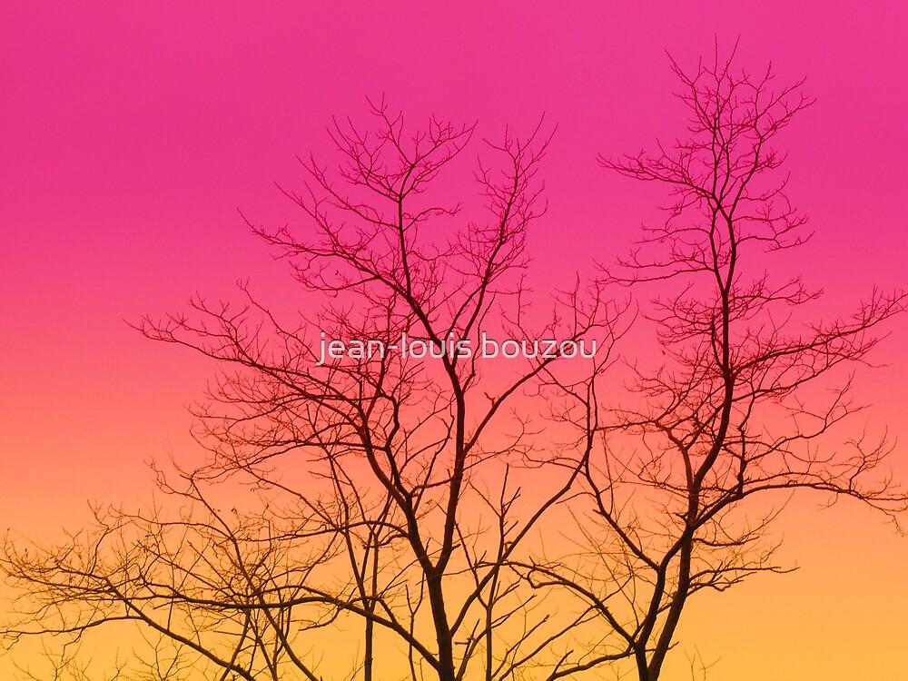 Winter Morning by jean-louis bouzou