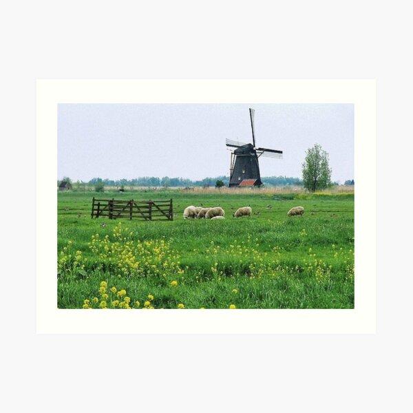 Green green grass of home........ Art Print