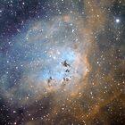 tadpoles nebula by David James