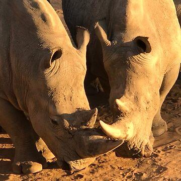 White Rhino by SophieNeville