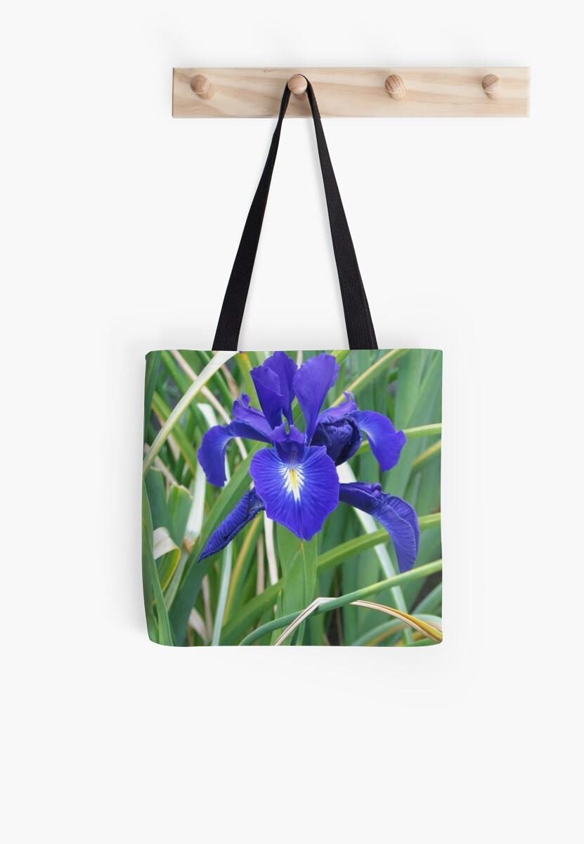 Dark Blue Iris by art2plunder