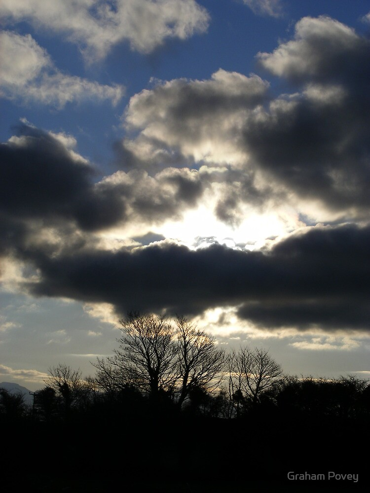 Winter trees and Cloud across the Sun by Graham Povey