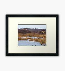 Oyster Pond Framed Print