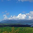Hinchinbrook Island from the Cardwell Range Lookout by Paul Gilbert