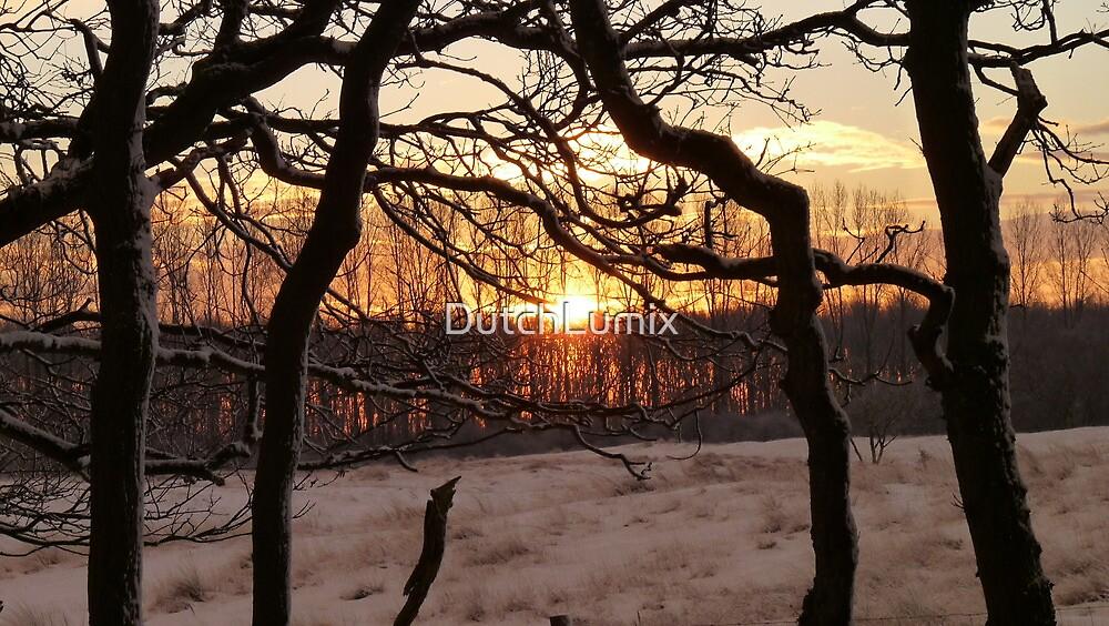 Sunrise in winter wonder land by DutchLumix