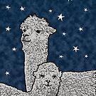 Alpacas in a starry night by hidden-design