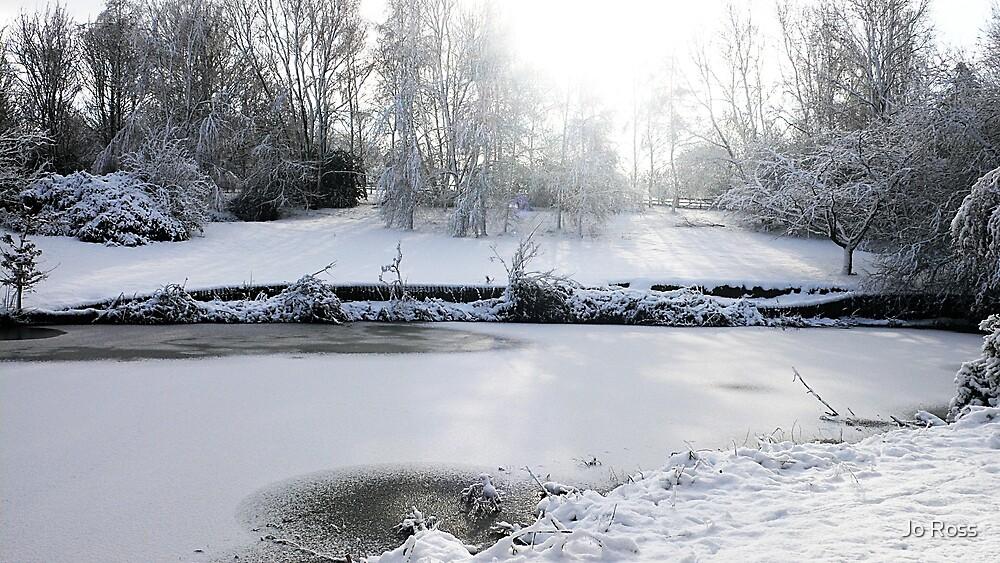 Winters Walk by Jo Ross