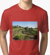 South Carolina Tri-blend T-Shirt