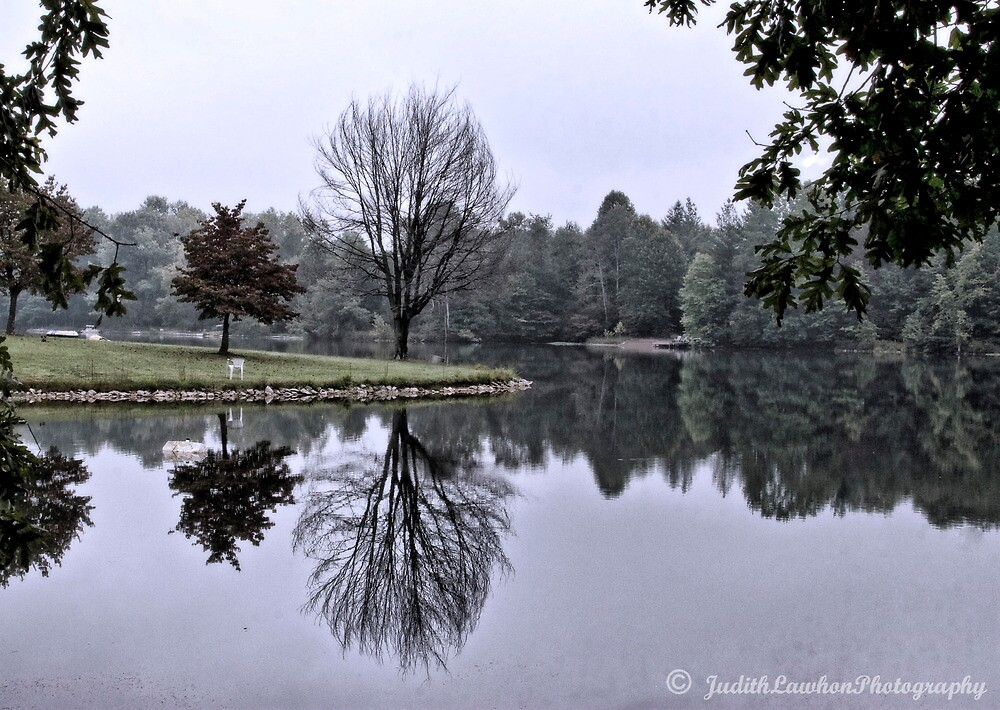 Overcast morn at the lake by Judy Lawhon