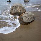 Moeraki Boulders. by Anne Scantlebury