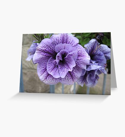 Flowers in Yarmouth Greeting Card