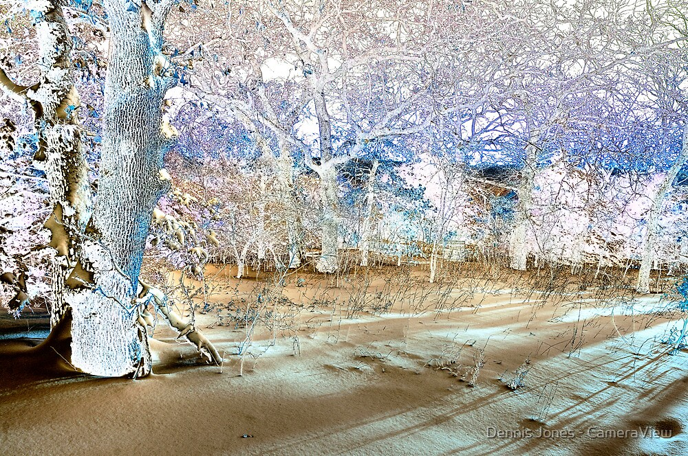 Early Morning Solarization by Dennis Jones - CameraView