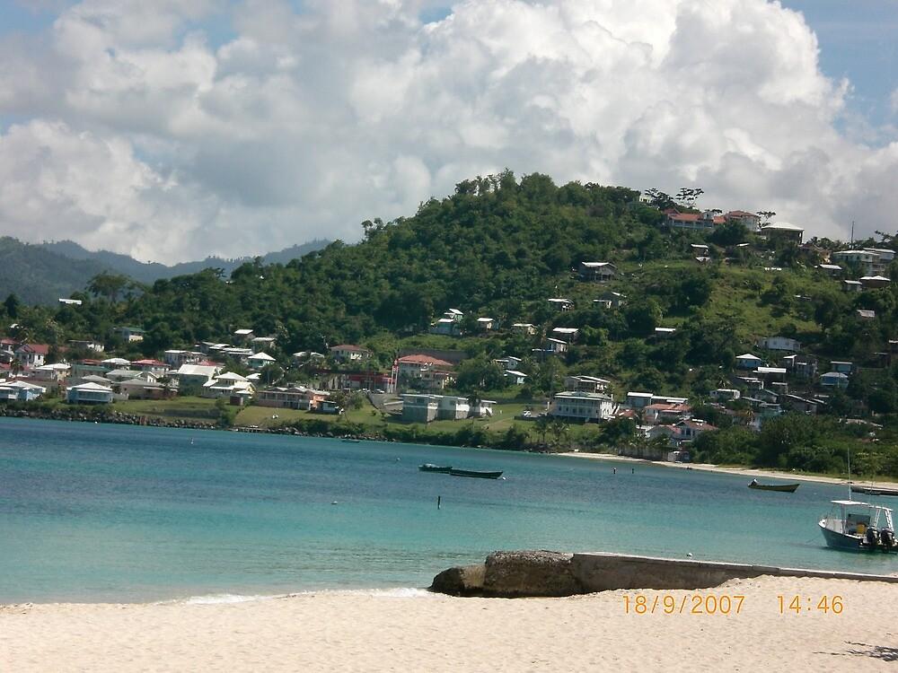 Paradise Beach in Grenada by Jadavision