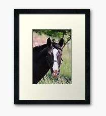 Hello There :) Framed Print