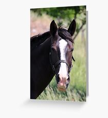 Hello There :) Greeting Card