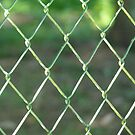 Wire-mesh by bubblehex08