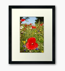 Wild Fields Framed Print