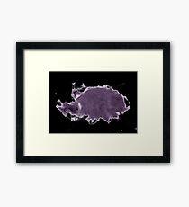 Purple Turtle Tho... Framed Print