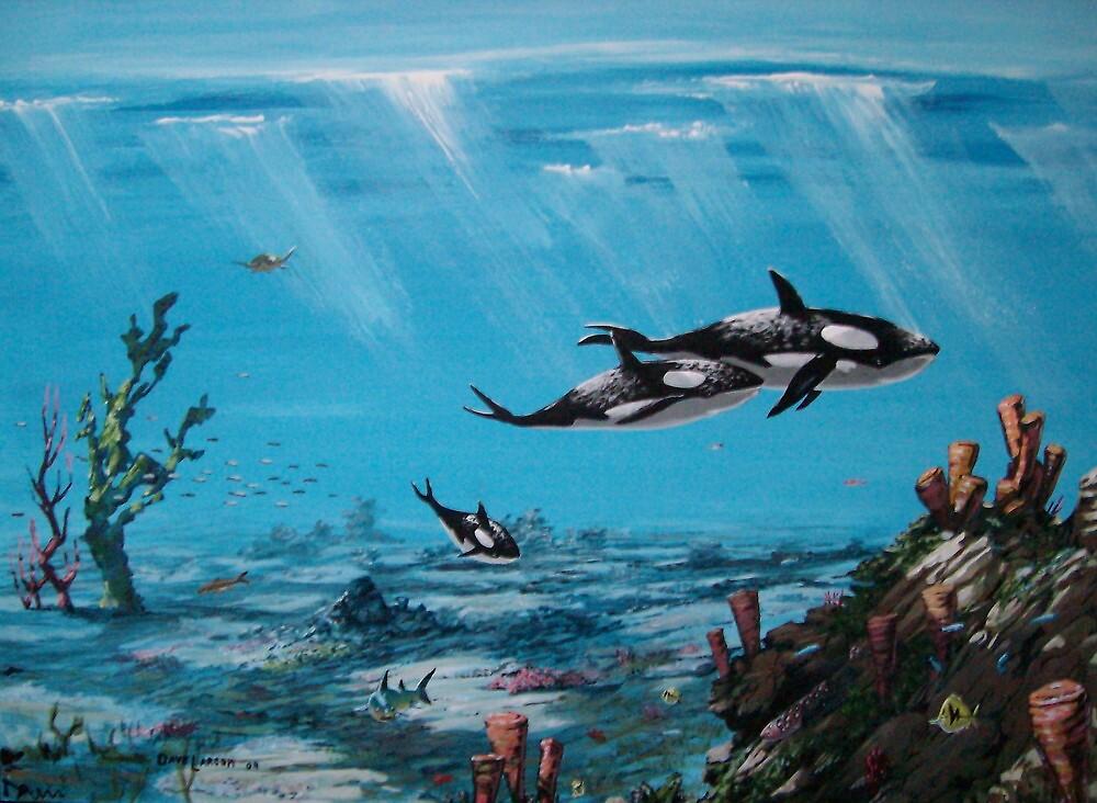 orca's realm by David  Larcom