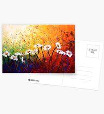 The Daisy Dance Postcards