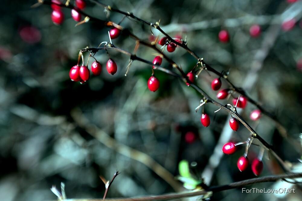Berries by ForTheLoveOfArt