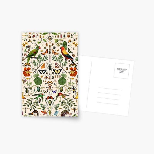 Biologie 404 Carte postale