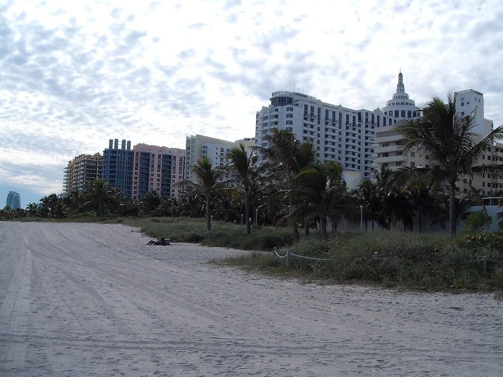 Miami Beach by Aasma