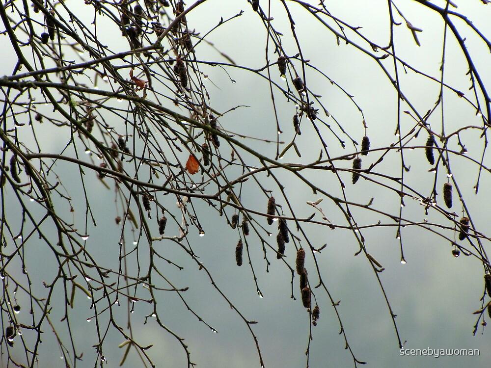 Rain Drops A Fallen by scenebyawoman