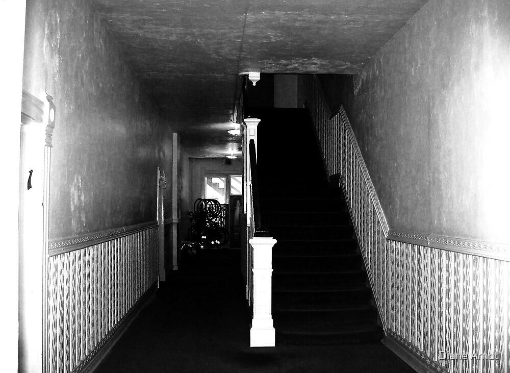 Hallway to ??????? by Diane Arndt