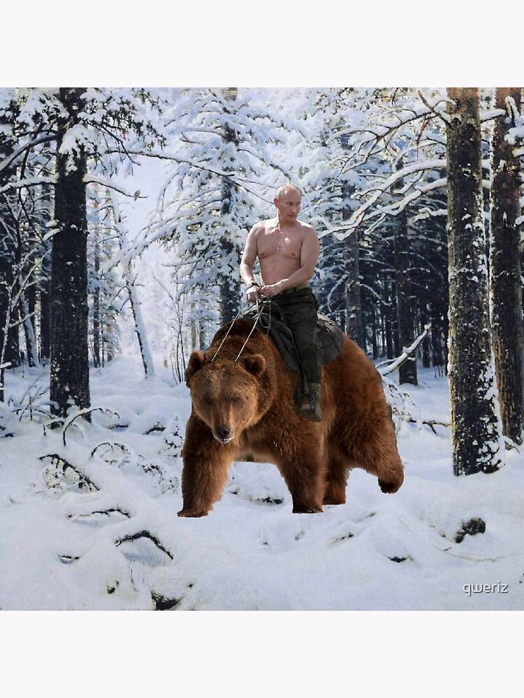 Putin on a bear by qweriz