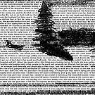 Scribbling desires. by RVRFNX