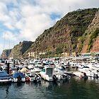 Calheta Marina Madeira by Lynn Bolt