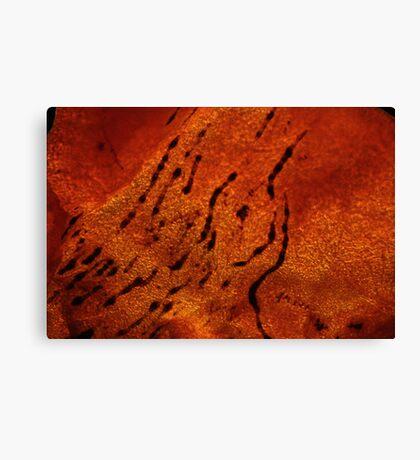 kaki skin Canvas Print