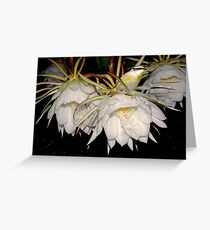 The Joys of Moonflowers Greeting Card