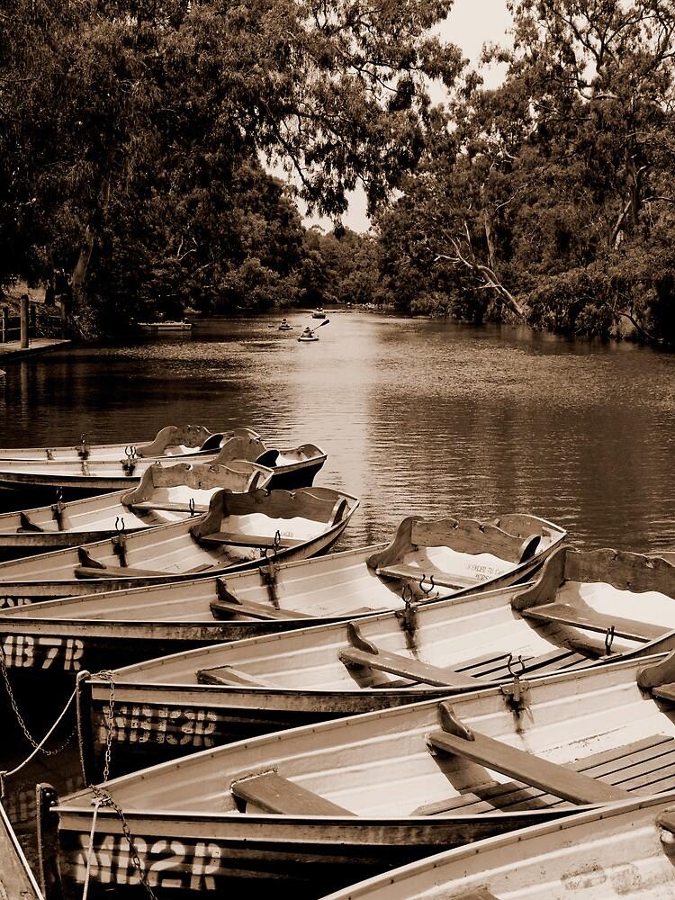 Yarra Bend - the boatshed #2 by Mark Elshout