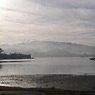 Misty morning, Cornelian Bay & Derwent River, Hobart by Lenny36