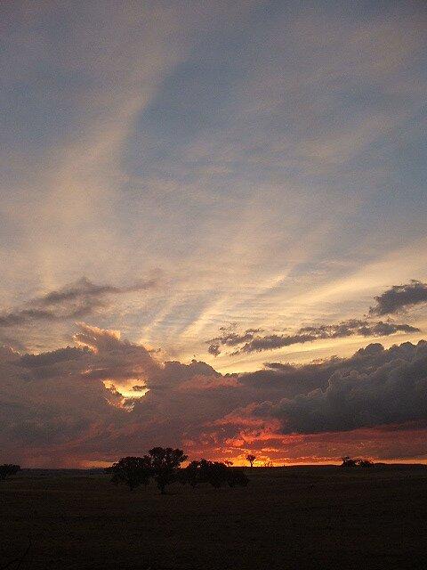 Boomey Hills sunset.m by shaldema1