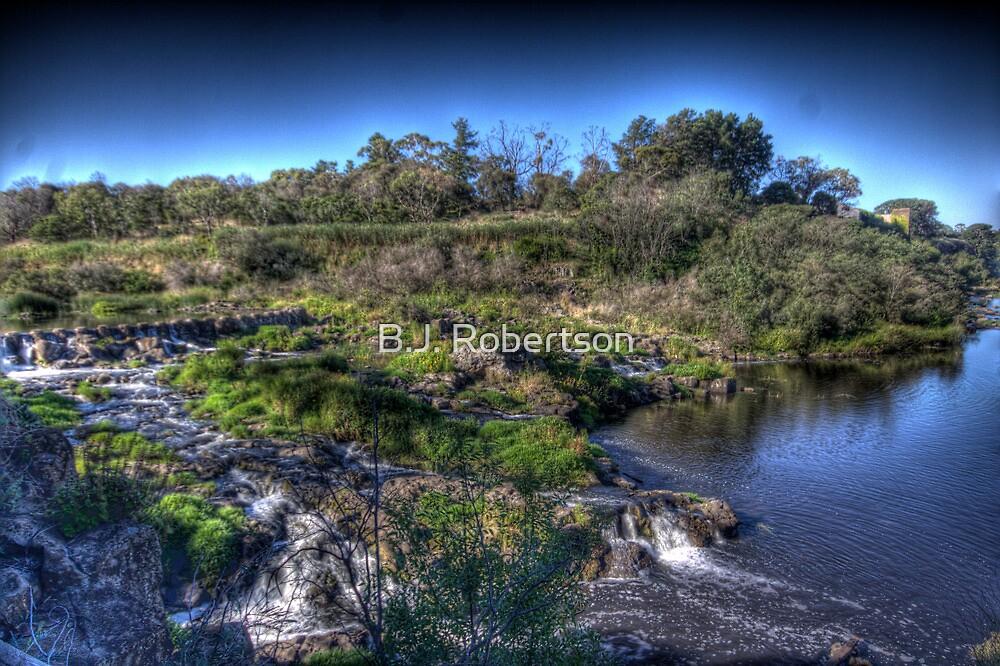Buckley Falls, Geelong by B.J. Robertson