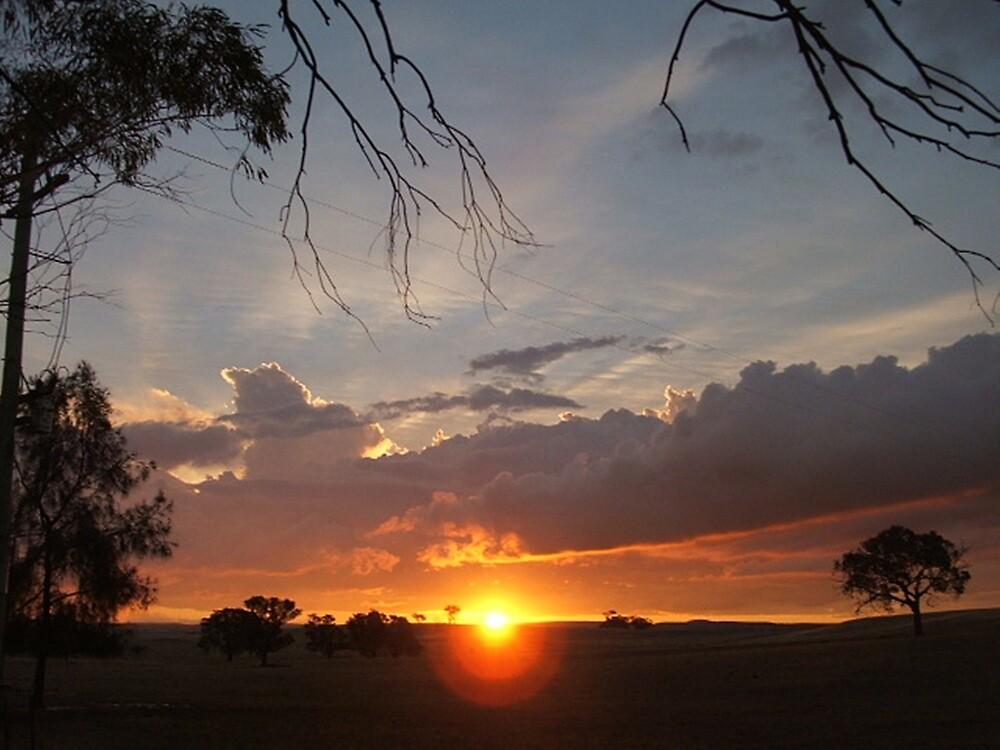Boomey Hills sunset.f by shaldema1