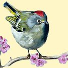 Ruby Crowned Kinglet cut out by Julie Ann Accornero