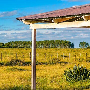 Rural Field Scene, San Jose Department, Uruguay by DFLCreative