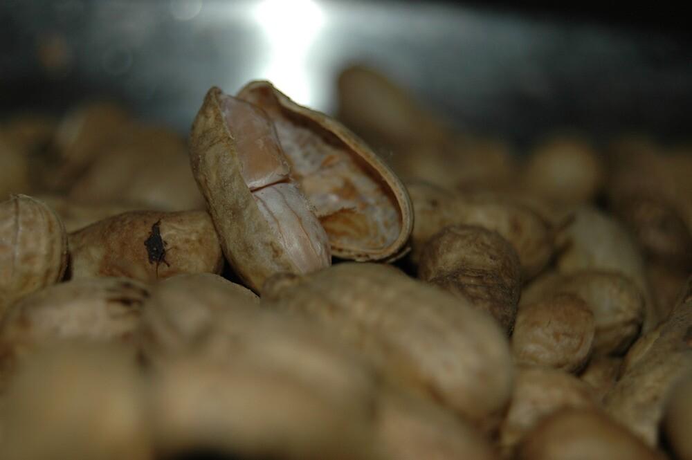ground nut by pugazhraj