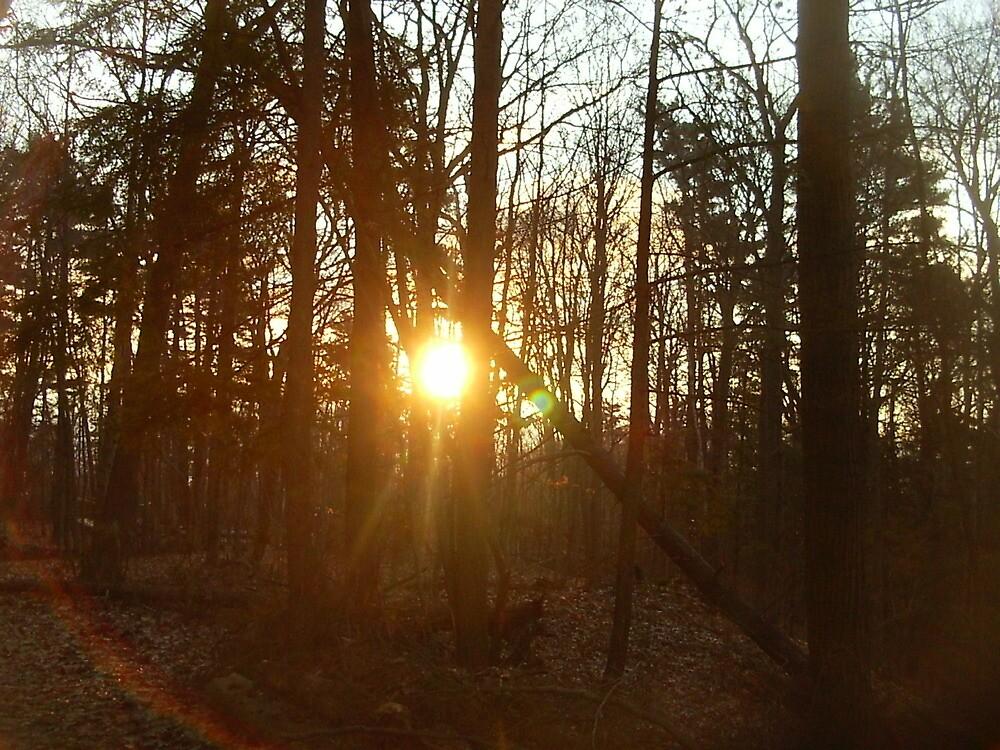 plain old sunrise by RRRR