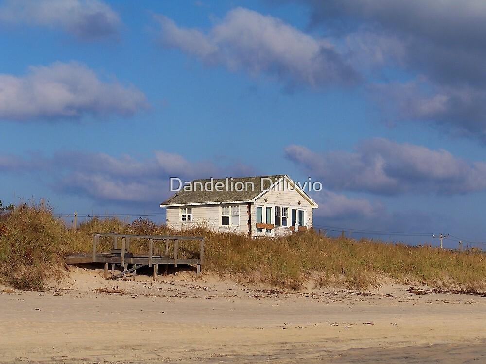 The Beach House by Dandelion Dilluvio