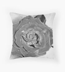 Waiting Rose  Throw Pillow