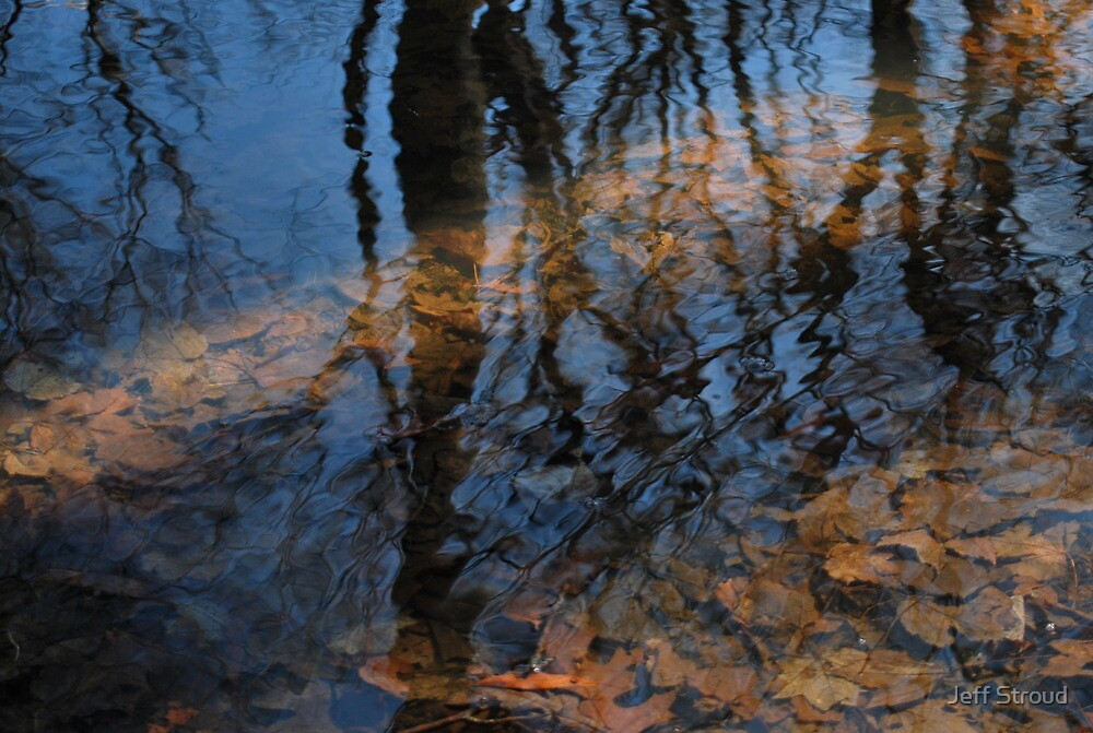 puddle of reflections and shadows  by Jeff stroud