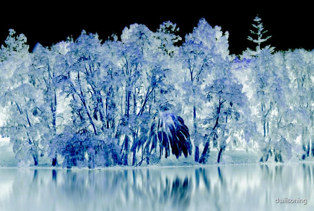 Light Forest  by dwilsoning