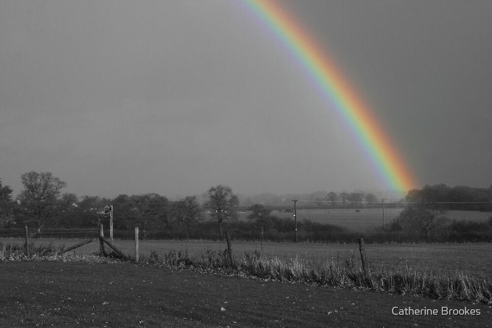 Rainbow by Catherine Brookes