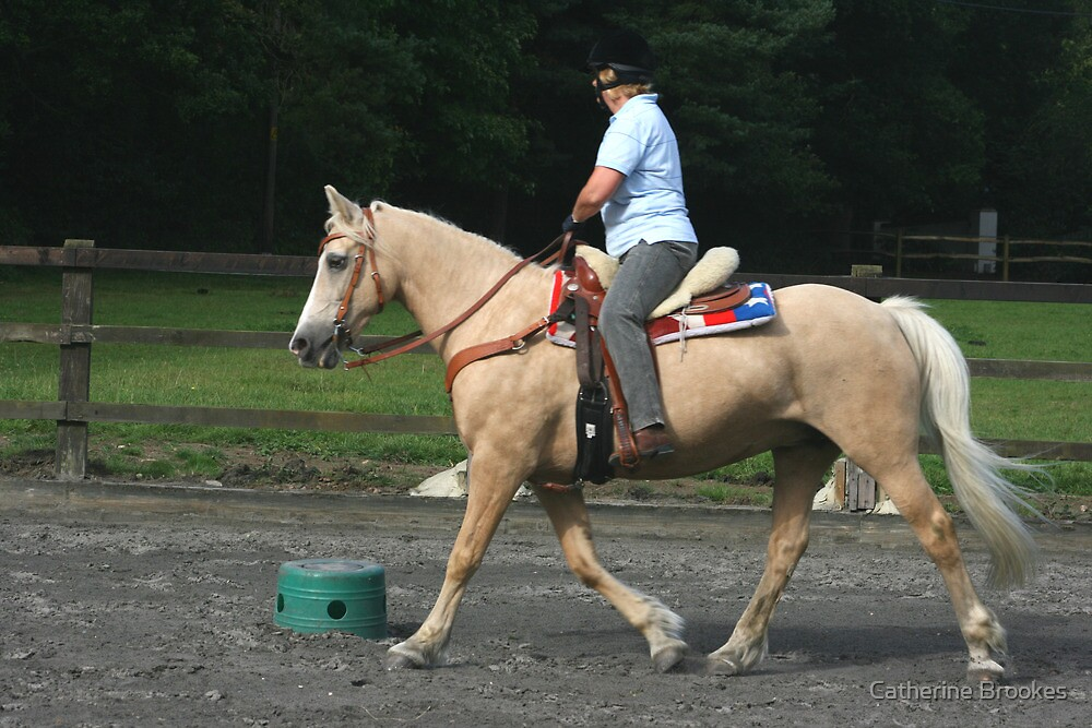 Western riding lesson by Catherine Brookes